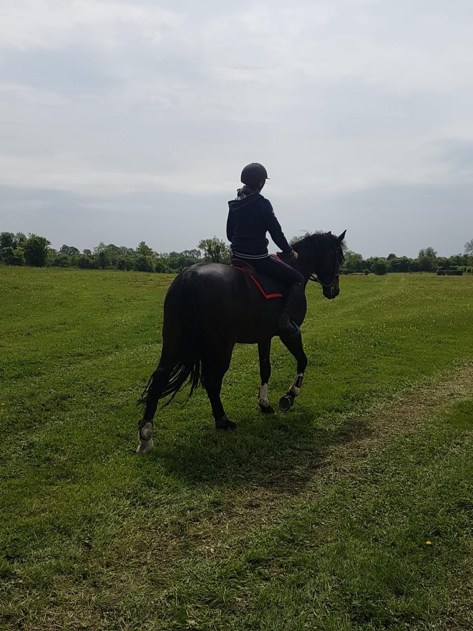 Collistown equestrian centre